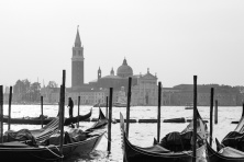 Venice Gallery-11
