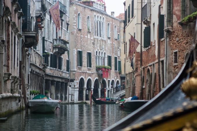 Venice Gallery-19